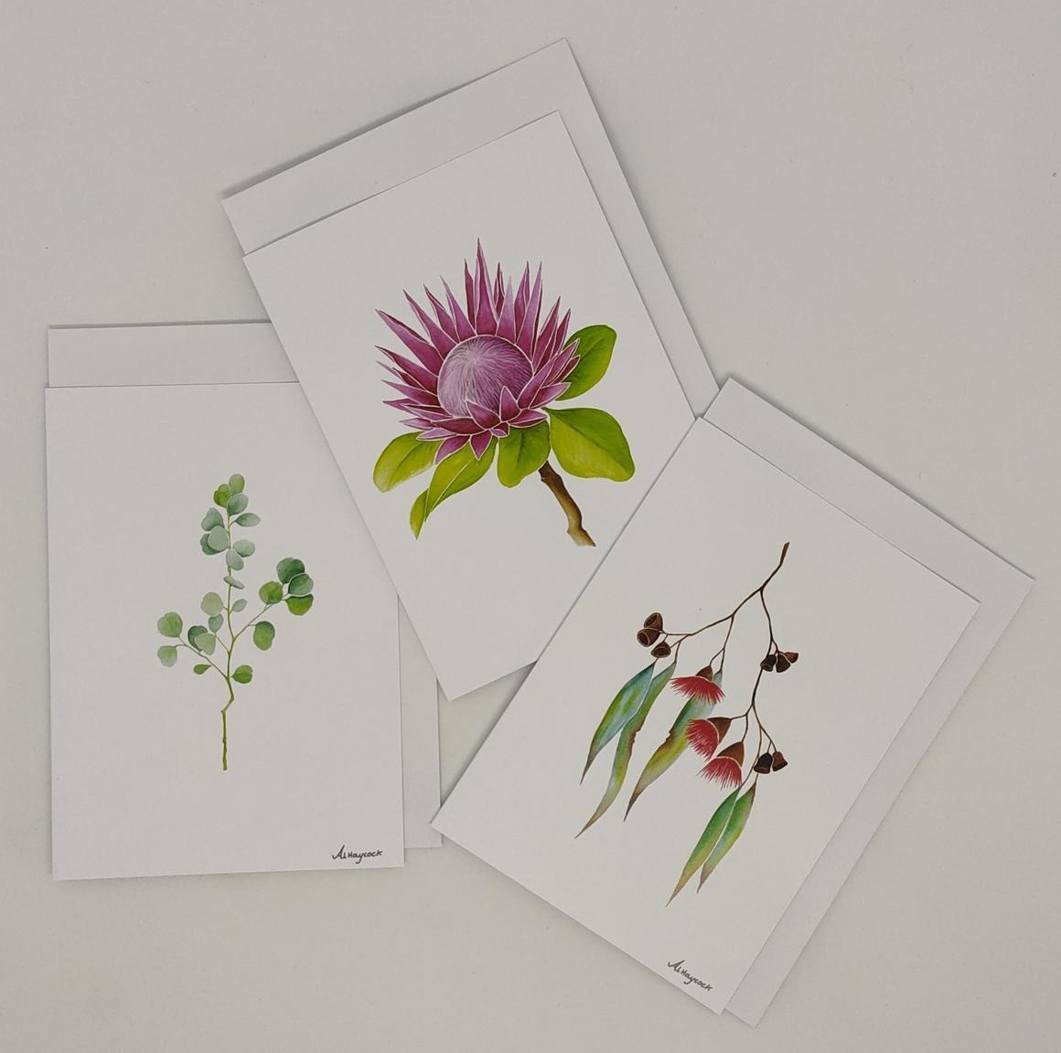 Gum Leaf, Protea, Gum Flower - 6 Pack of Cards | Trada Marketplace