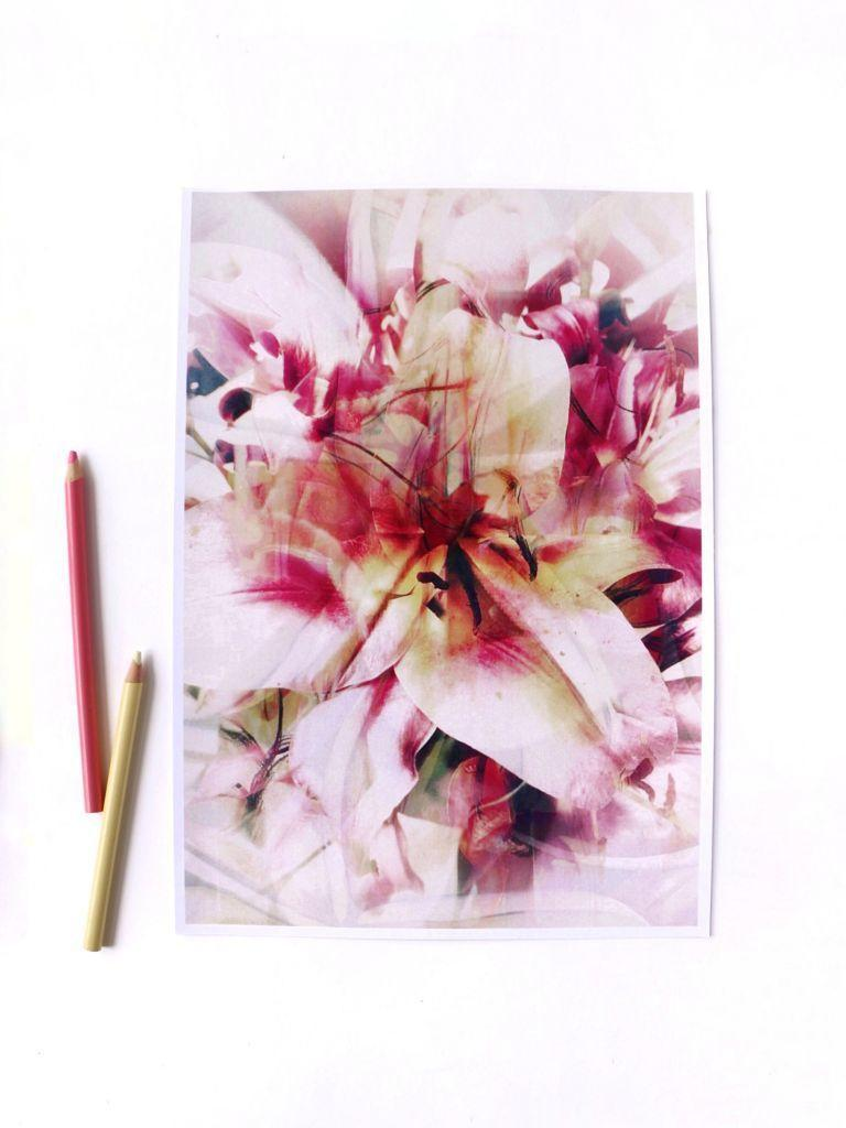 Dreams of Pink Print | Trada Marketplace