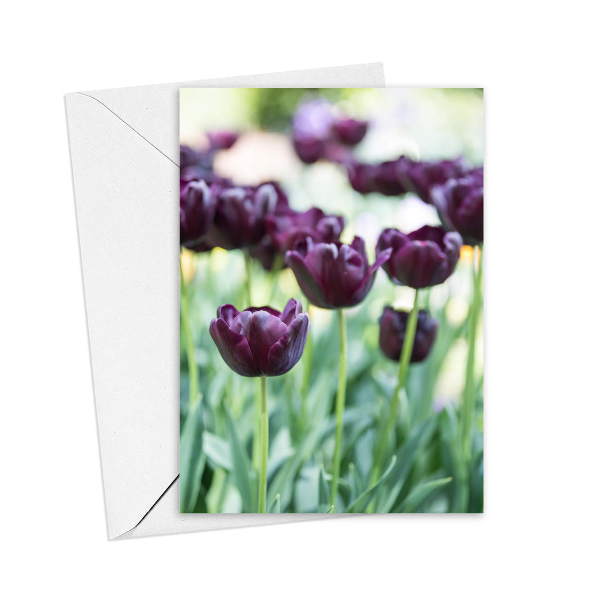 Tulips Greeting Card   Trada Marketplace