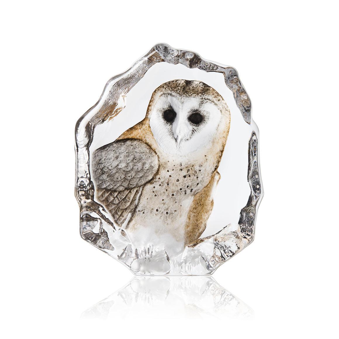 Barn Owl | Trada Marketplace