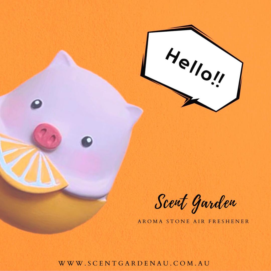 Aroma Stone ( Orange Piggy ) Car Air Vent Diffuser | Trada Marketplace