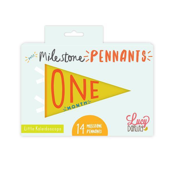 Little Kaleidoscope Petit Milestone Pennants | Trada Marketplace