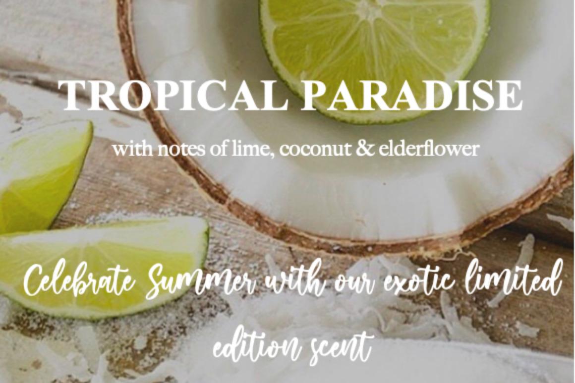 Tropical Paradise   Trada Marketplace