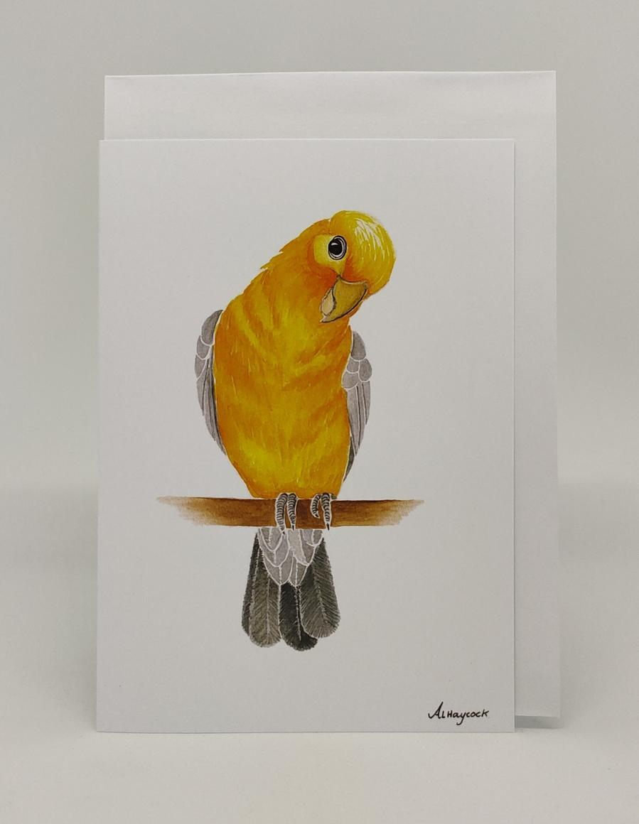 Orange Budgie Card | Trada Marketplace