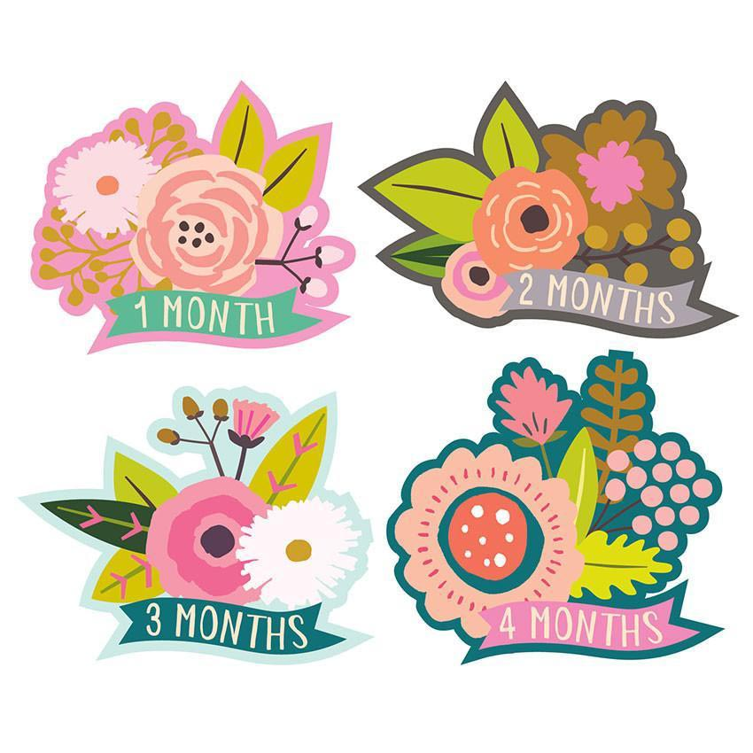 Little Blossom 1-12 | Trada Marketplace