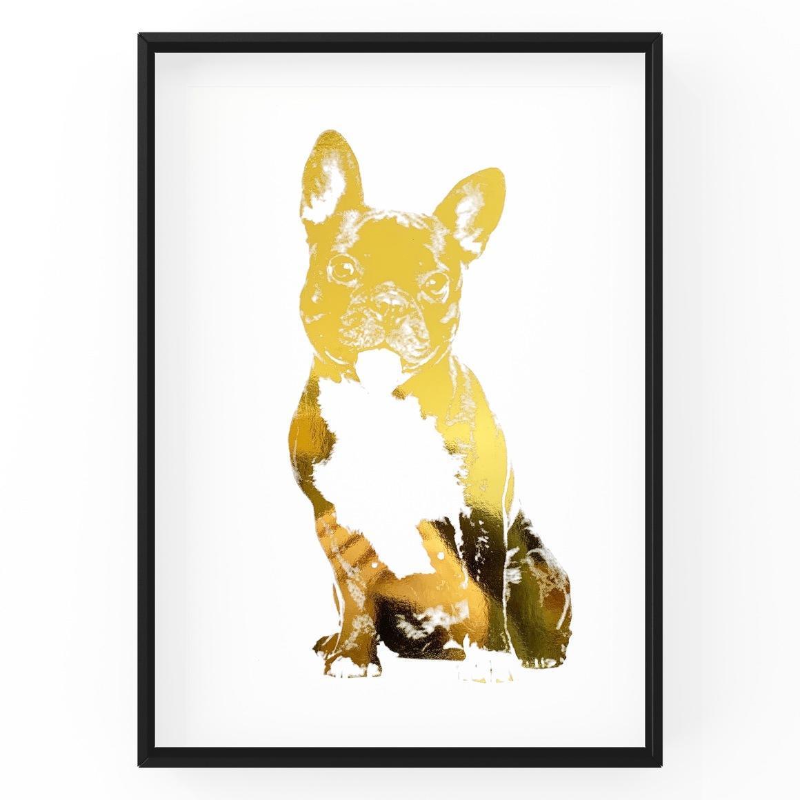 French Bulldog | Trada Marketplace