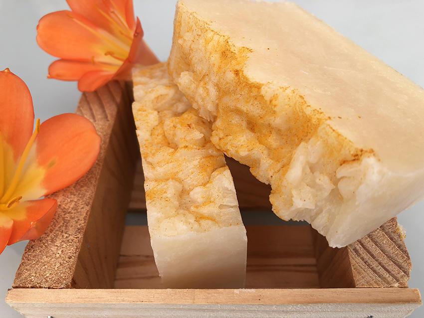 Gentle Paw Almost Edible Shampoo Bar | Trada Marketplace