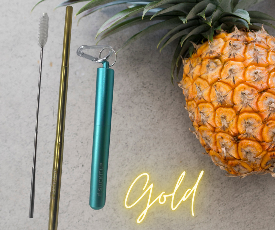 SUCKITUPstraws Telescopic Straw Case-Mint Aqua | Trada Marketplace