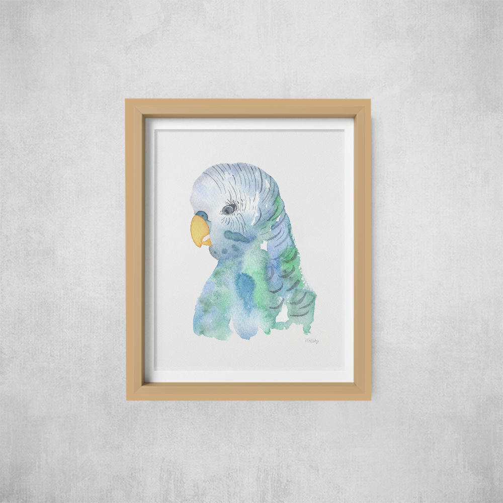 A4 Print -not framed Budgie | Trada Marketplace