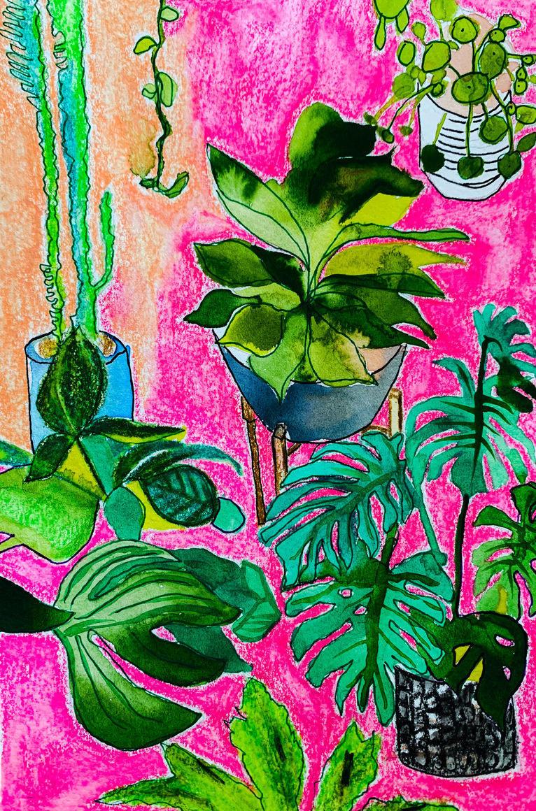 Indoor Jungle4 | Trada Marketplace