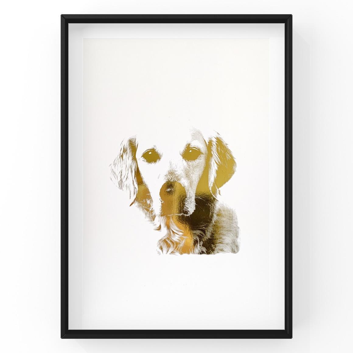 Golden Retriever Face | Trada Marketplace