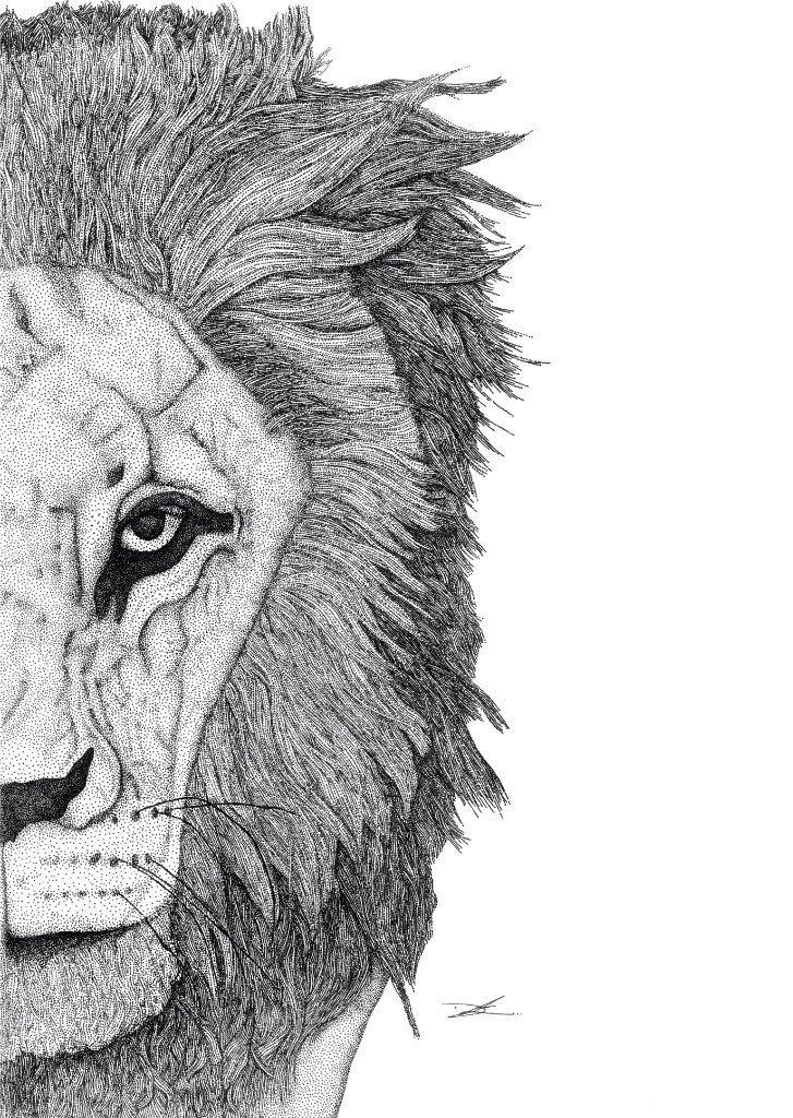 Leo the Lion   Trada Marketplace