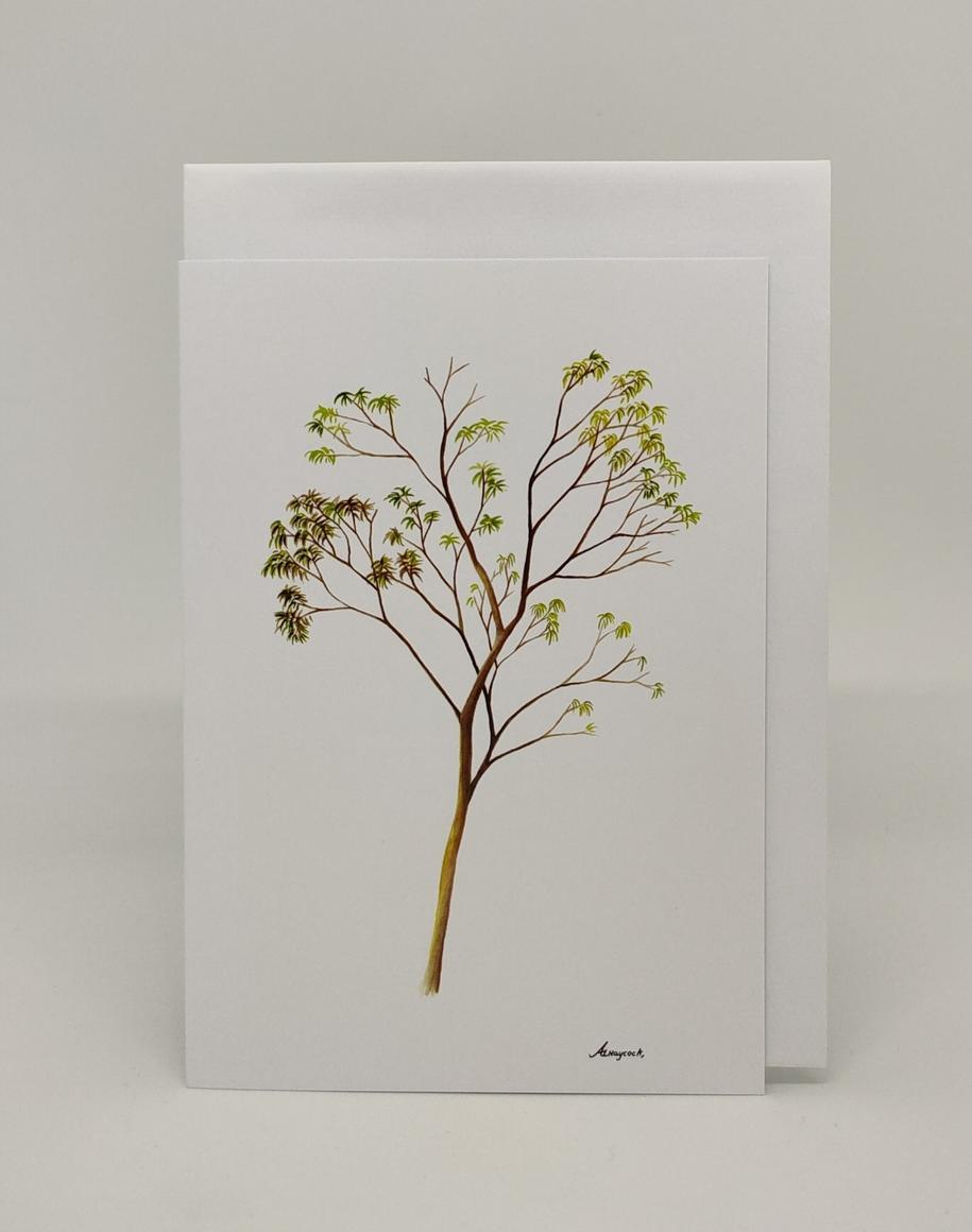 Gum Tree Card | Trada Marketplace