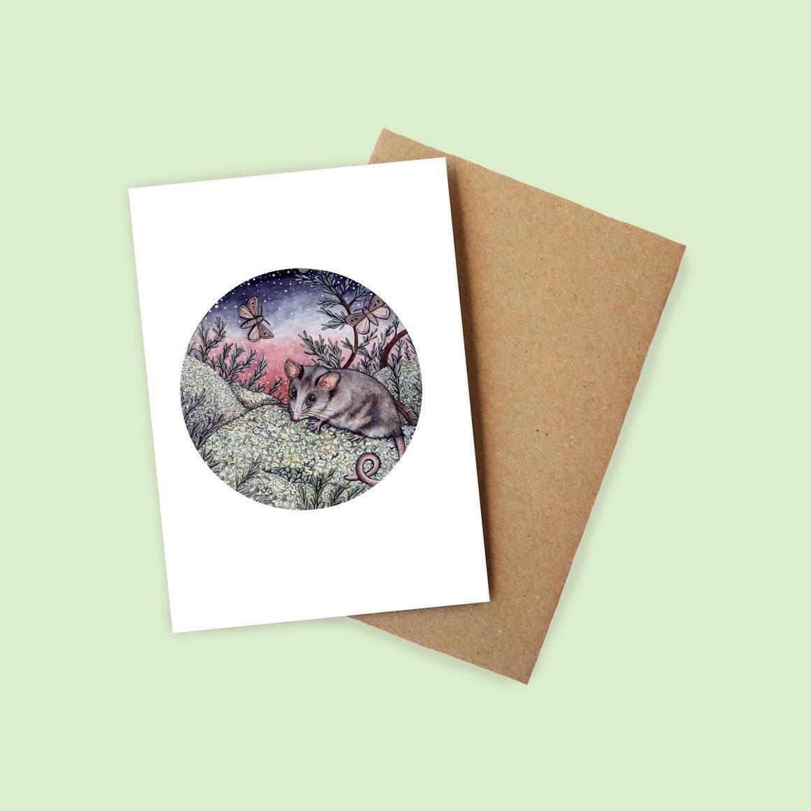 Greeting Card - Mountain Pygmy Possum | Trada Marketplace