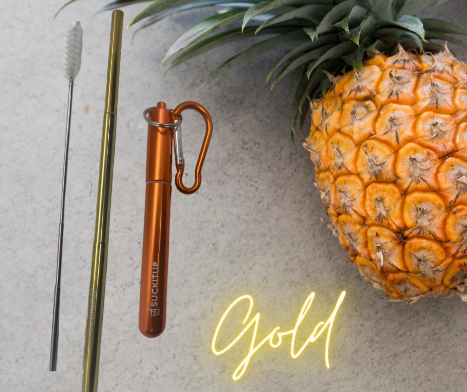 SUCKITUPstraws Telescopic Straw Case-Orange | Trada Marketplace