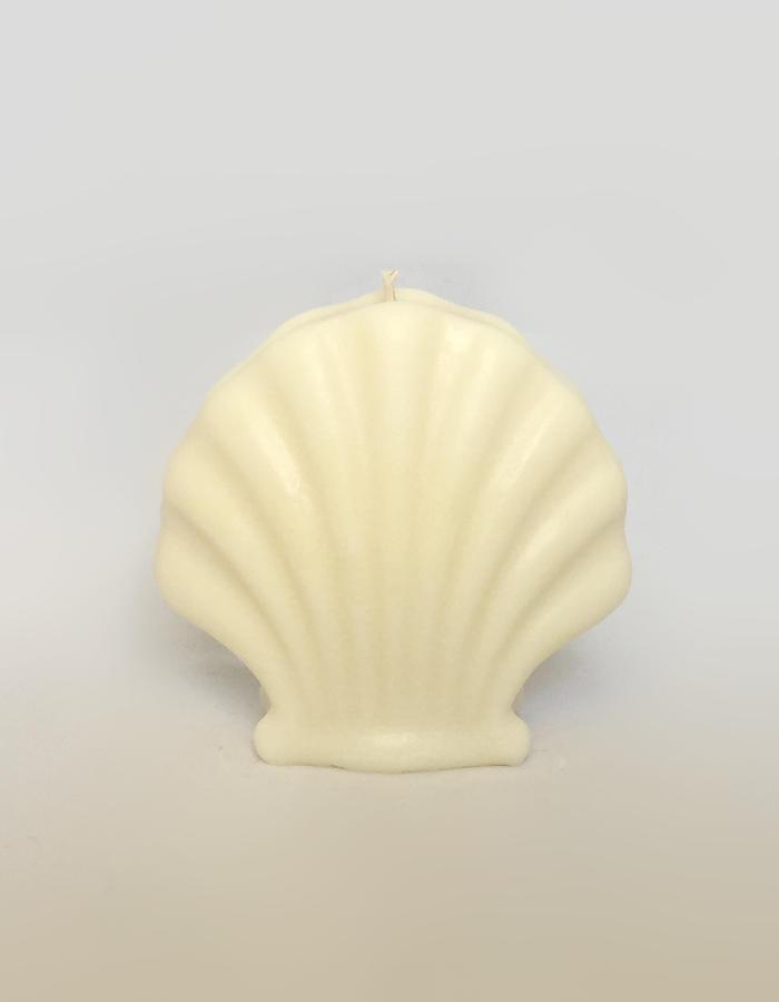 Shell Candle: Nature   Trada Marketplace