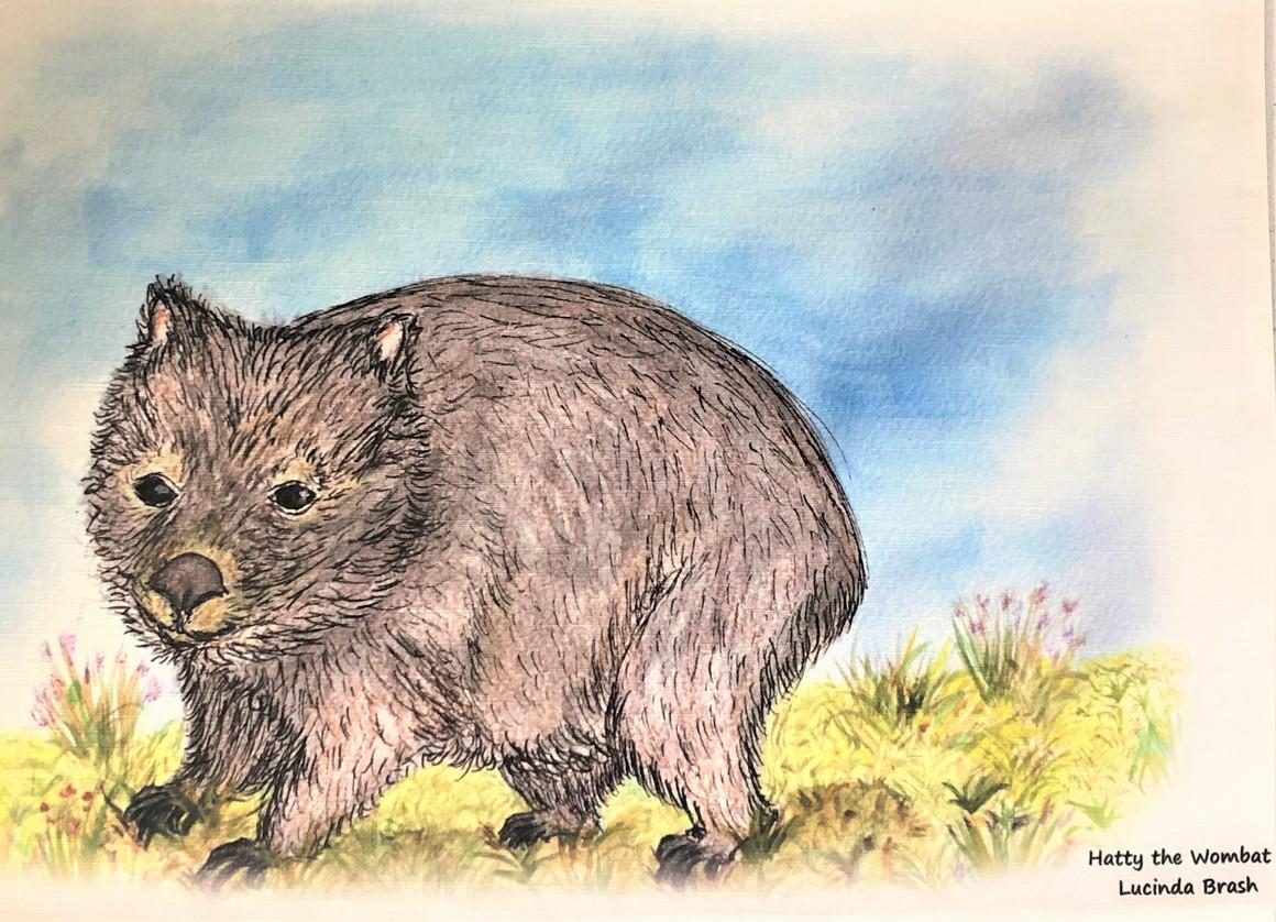 Tea Towel - Hatty the Wombat   Trada Marketplace