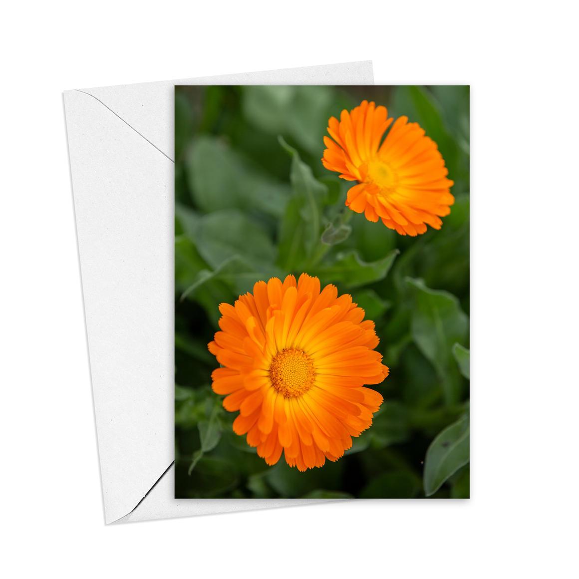 Calendular Greeting Card   Trada Marketplace