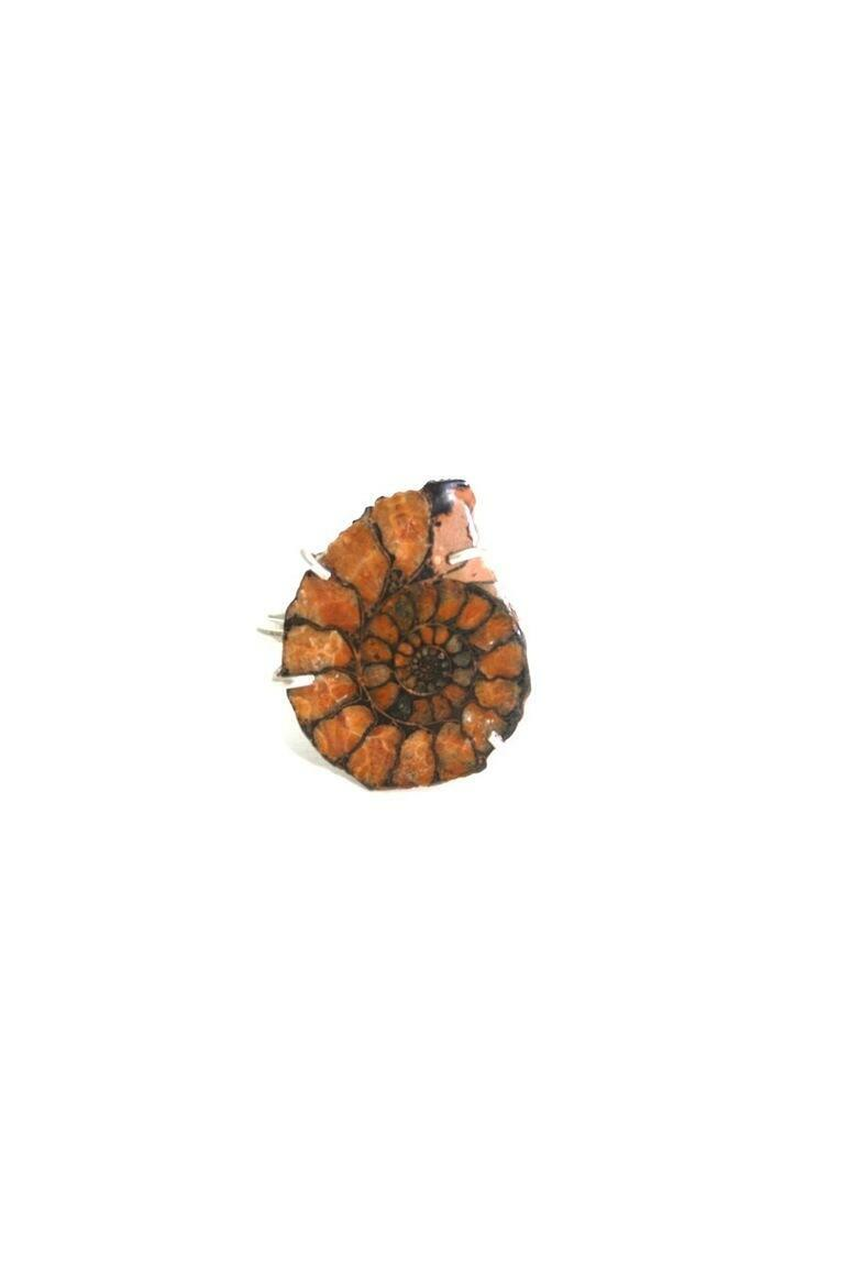 Ammonite Fossil Ring Sterling Silver   Trada Marketplace