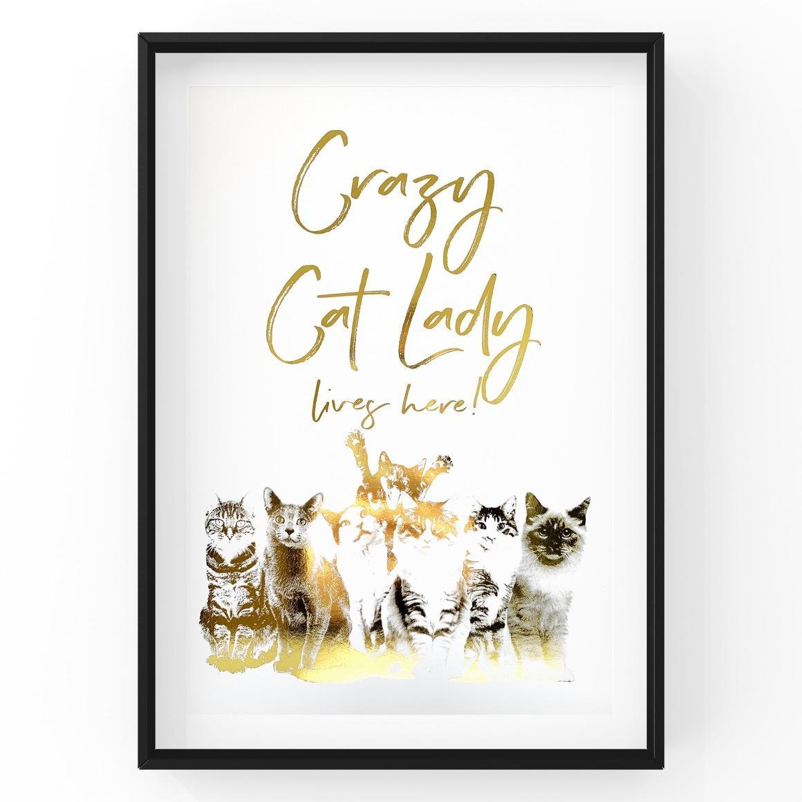 Crazy Cat Lady Lives Here | Trada Marketplace