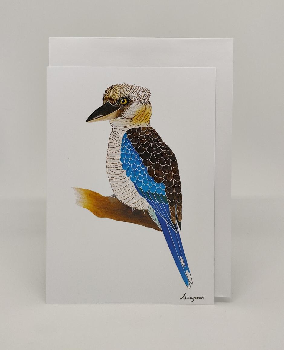 Kookaburra Card | Trada Marketplace