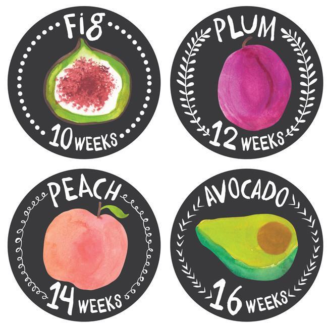 Growing Garden Pregnancy Belly | Trada Marketplace