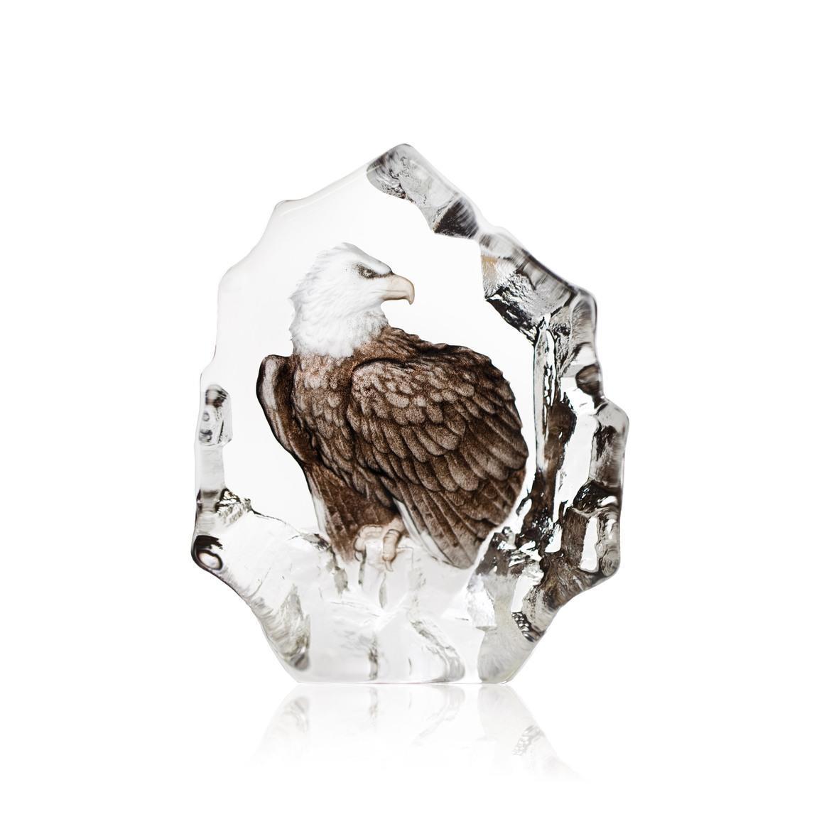 Bald Eagle | Trada Marketplace