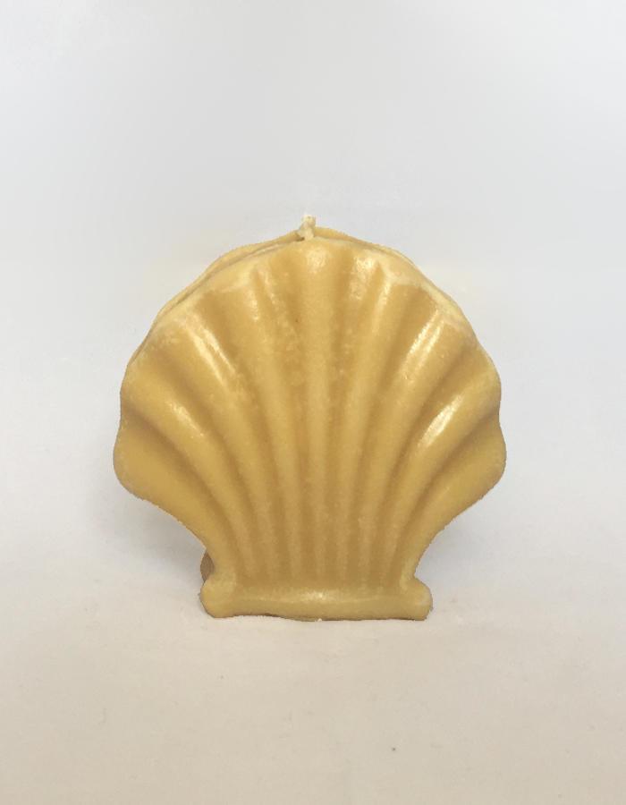 Shell Candle: Honey   Trada Marketplace