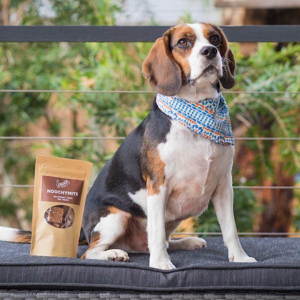 Larrykin Dog Treats | Trada Marketplace