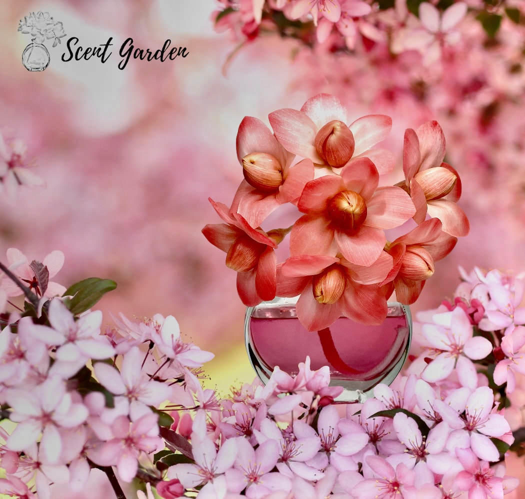 IMPERIAL ESSENCE Pink Champagne & Exotic Fruits | Trada Marketplace