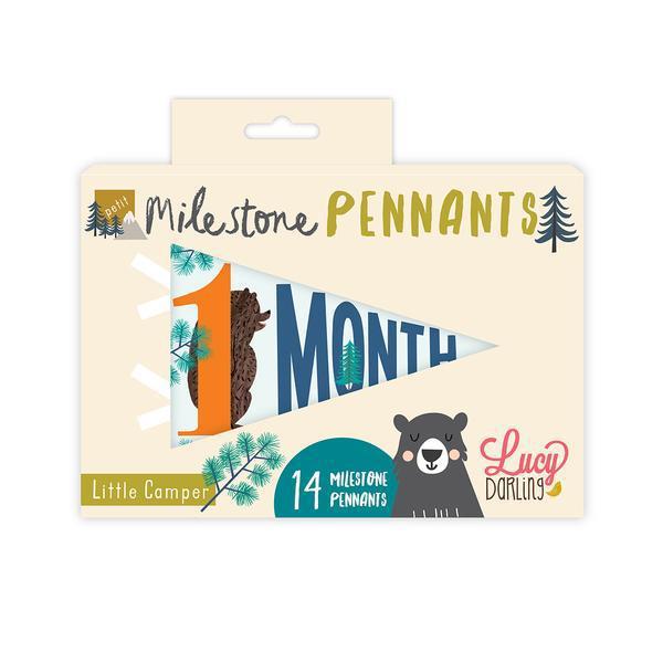 Little Camper Petit Milestone Pennants | Trada Marketplace
