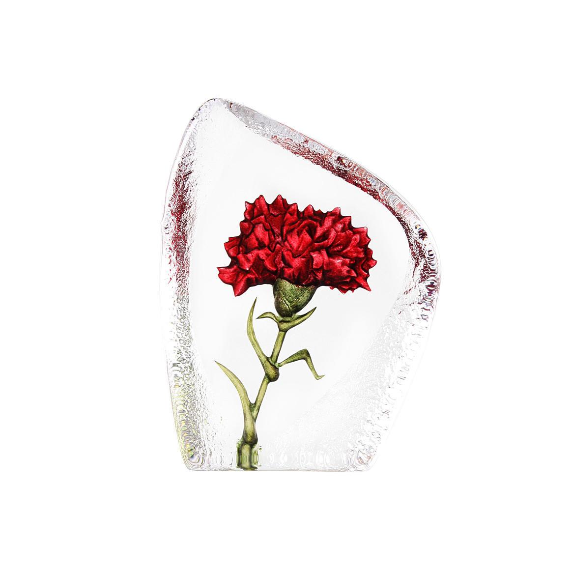 Carnation | Trada Marketplace