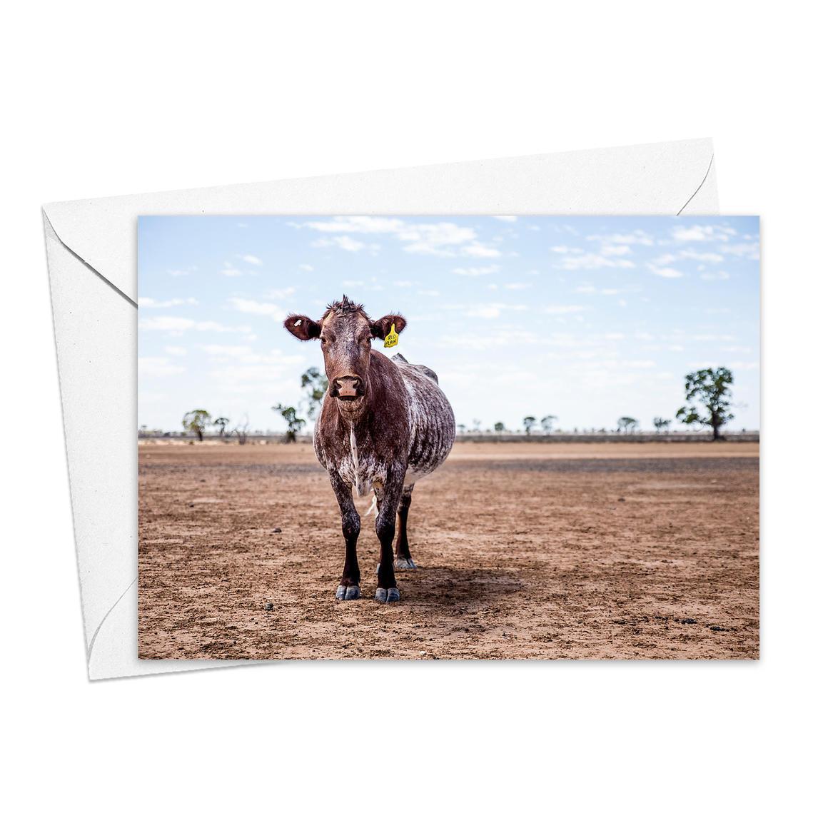 Lone Heifer Greeting Card   Trada Marketplace