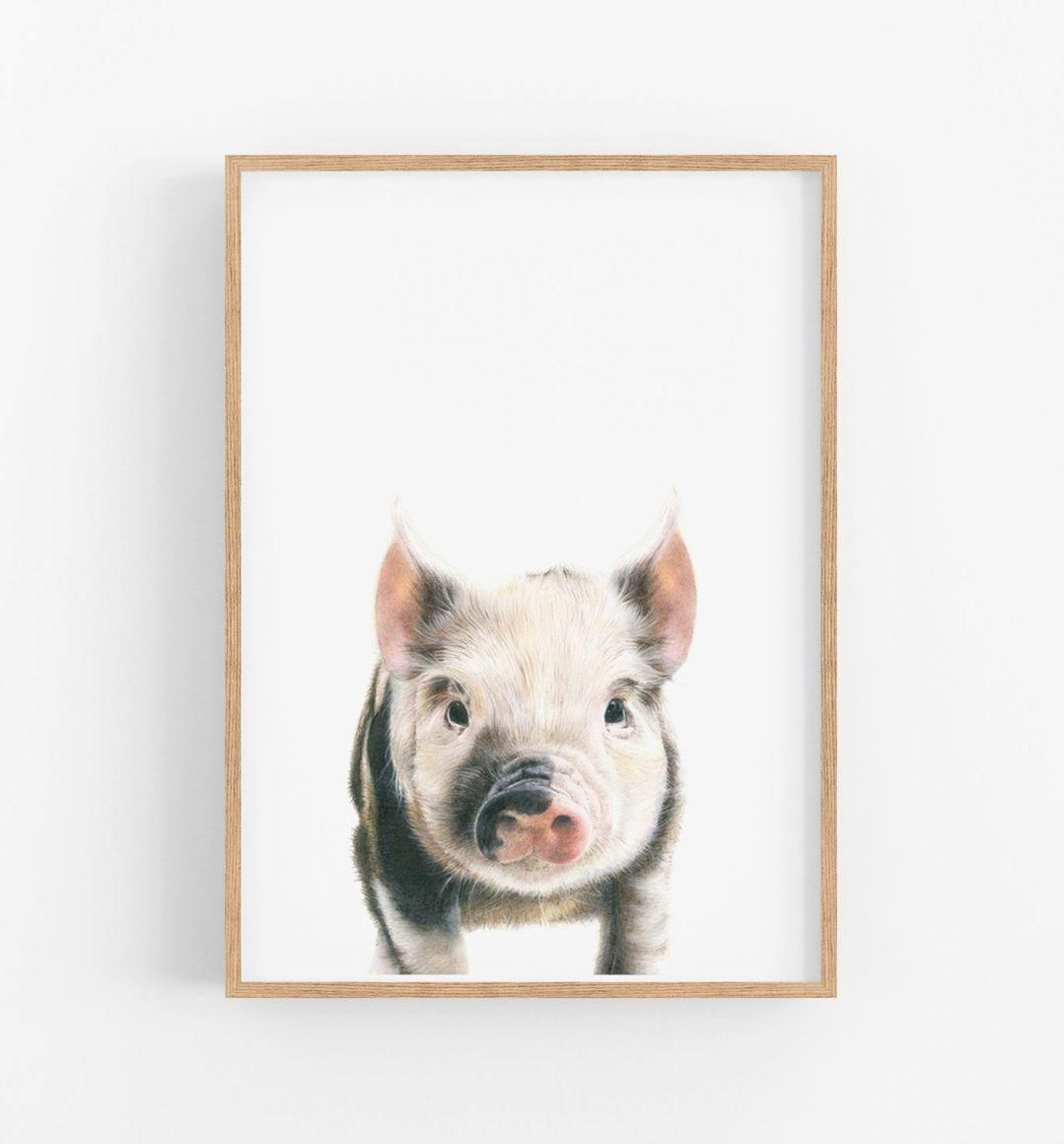 PENELOPE THE PIG   Trada Marketplace