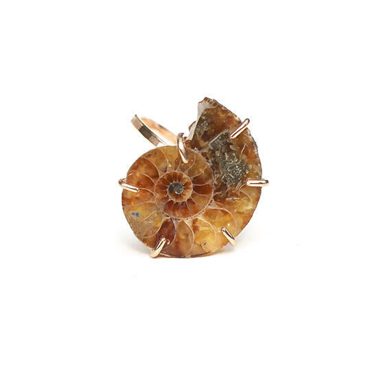 Ammonite Fossil Ring Gold Filled   Trada Marketplace